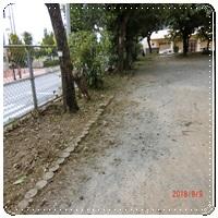 http://www.ginowan-h.open.ed.jp/ptaCIMG1061-20180918.JPG